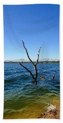 Table Rock Lake Kimberling City Beach Sheet