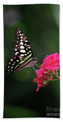 Tailed Jay Butterfly -graphium Agamemnon- On Pink Flower Beach Towel