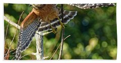 Take Off Beach Towel by Don Durfee