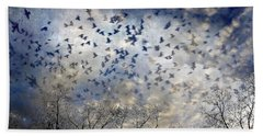 Beach Towel featuring the photograph Taken Flight by Jan Amiss Photography