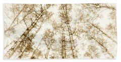 Beach Towel featuring the photograph Tall Aspens by Elena Elisseeva