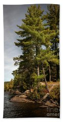 Beach Towel featuring the photograph Tall Pines On Lake Shore by Elena Elisseeva