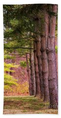 Tall Pines Standing Guard Beach Towel