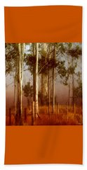 Tall Timbers Beach Towel by Holly Kempe