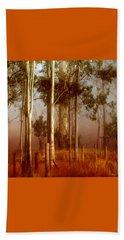 Tall Timbers Beach Sheet