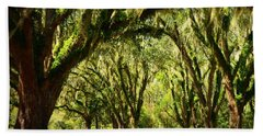 Tallahassee Canopy Road Beach Towel