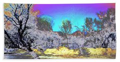 Tanque Verde Wash Abstract Beach Sheet by M Diane Bonaparte