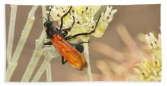 Tarantula Hawk Beach Towel