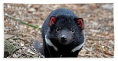 Tasmanian Devil Beach Sheet
