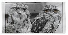 Tawney Frogmouths Beach Towel