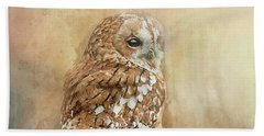 Tawny Owl Beach Sheet