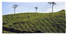 Tea Planation In Kerala - India Beach Towel