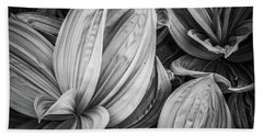 Techno Hosta Beach Sheet