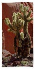 Teddybear Cholla Cactus-signed-#3322 Beach Towel
