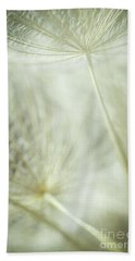 Tender Dandelion Beach Towel by Iris Greenwell