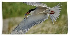 Tern Beach Towel