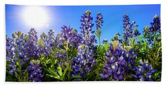 Texas Bluebonnets Backlit II Beach Sheet