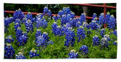 Texas Bluebonnets In Ennis Beach Towel