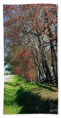 Beach Towel featuring the photograph Texas Fall by Lori Mellen-Pagliaro