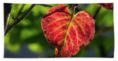 Beach Towel featuring the photograph The Autumn Heart by Bill Pevlor