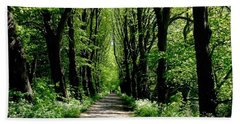 The Avenue Of Limes At Mill Park 3 Beach Towel