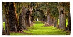 The Avenue Of Oaks 4 St Simons Island Ga Art Beach Sheet by Reid Callaway