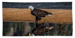 The Bald Eagle Beach Towel by Mitch Shindelbower