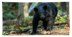 Beach Towel featuring the photograph The Bear by Everet Regal