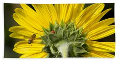 The Bee Lady Bug And Sunflower Beach Towel