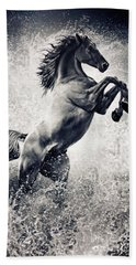 The Black Stallion Arabian Horse Reared Up Beach Towel