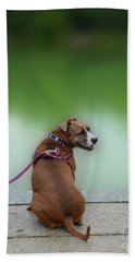 The Boxer In Central Park Beach Towel by Joseph J Stevens