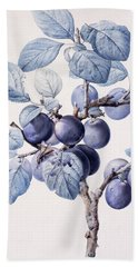 The Branch Of A Plum Tree Beach Towel