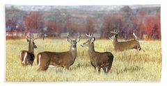Beach Towel featuring the photograph The Bucks Stop Here White-tail Deer  by Jennie Marie Schell