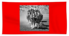 The Budweiser Clydesdales Beach Towel