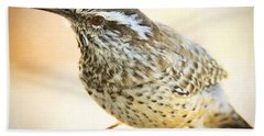 The Cactus Wren  Beach Towel