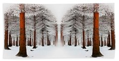 The Calm Of Winter In The Woods Beach Towel