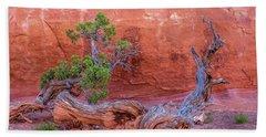 The Canyon Wall Juniper Beach Towel