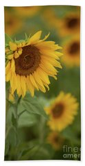 The Close Up Of Sunflowers Beach Towel