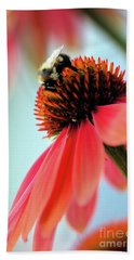 The Coneflower Collection 2 Beach Towel