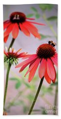 The Coneflower Collection Beach Towel