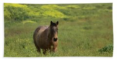 The Curious Working Horse Beach Towel