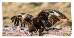 Beach Towel featuring the photograph The Eagle Have Come Down by Torbjorn Swenelius