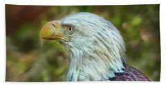 Beach Towel featuring the photograph The Eagle Look by Hanny Heim
