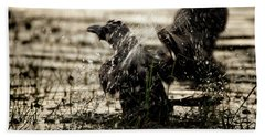 The Eastern Jungle Crow Corvus Macrorhynchos Levaillantii Beach Towel