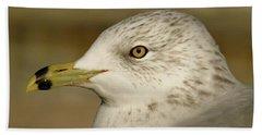 The Eye Of The Seagull Beach Towel