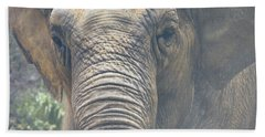 The Eyes Of Age Beach Towel by Mitch Shindelbower