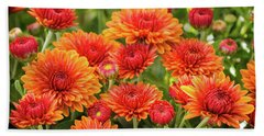 Beach Towel featuring the photograph The Fall Bloom by Bill Pevlor