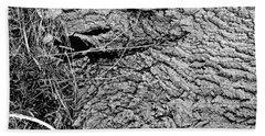 The Fallen - Dragon Eye Beach Towel
