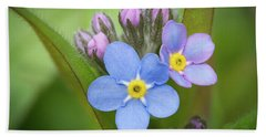 Beach Towel featuring the photograph The First Blossom Of The Forget Me Not by William Lee