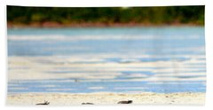 The Five Sandpipers Beach Towel